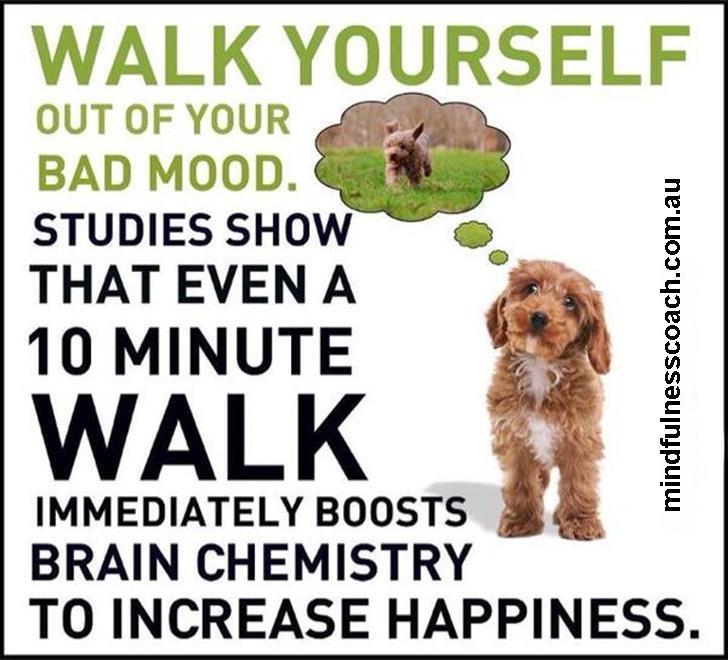 Depressed? Go For A Walk