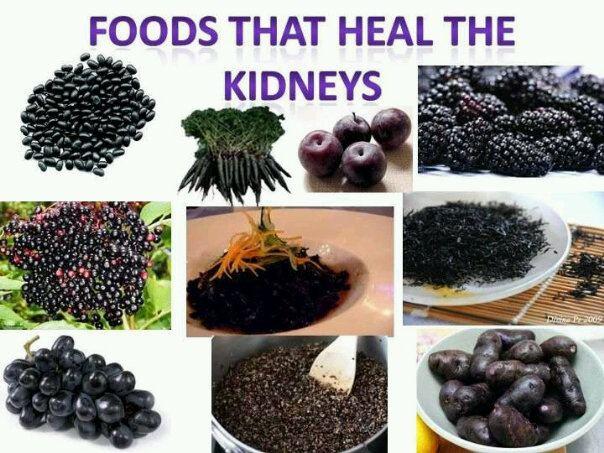 Best Foods To Heal Your Kidneys